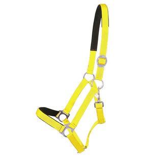 Pfiff-Halster-neon-geel