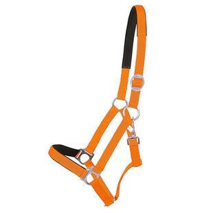 Pfiff-Halster-neon-oranje