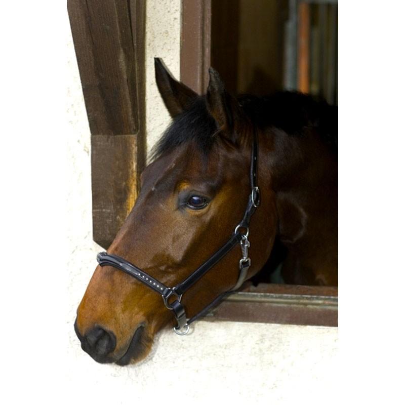 USG-Halster-Marvelous-zwart-Pony