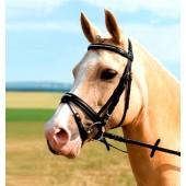 USG-Hoofdstel-Charming-zwart-Pony