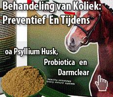 Behandeling van koliek bij paarden